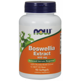 Boswellia Extract (500mg 65%)