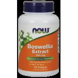 Boswellia Extract - 500mg