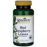 Red Raspberry Leaves 380 mg