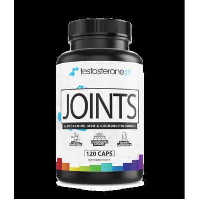 JOINTS (Glukozamina+MSM+Chondroityna+Kolagen+KwasHialuronowy)