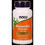 Boswellia Extract plus Turmeric Root