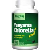 Yaeyama Chlorella