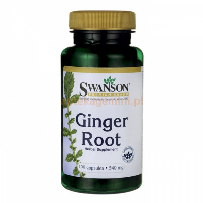 Ginger Extract Root (5% ekstrakt imbir)