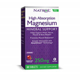 High Absorption Magnesium