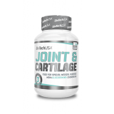 Joint & Cartilage