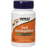 Acidophilus 4x6
