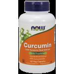 Curcumin 95%
