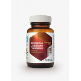 Rhodiola & Siberian Ginseng