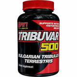 Tribuvar 500 Bulgarian Tribulus