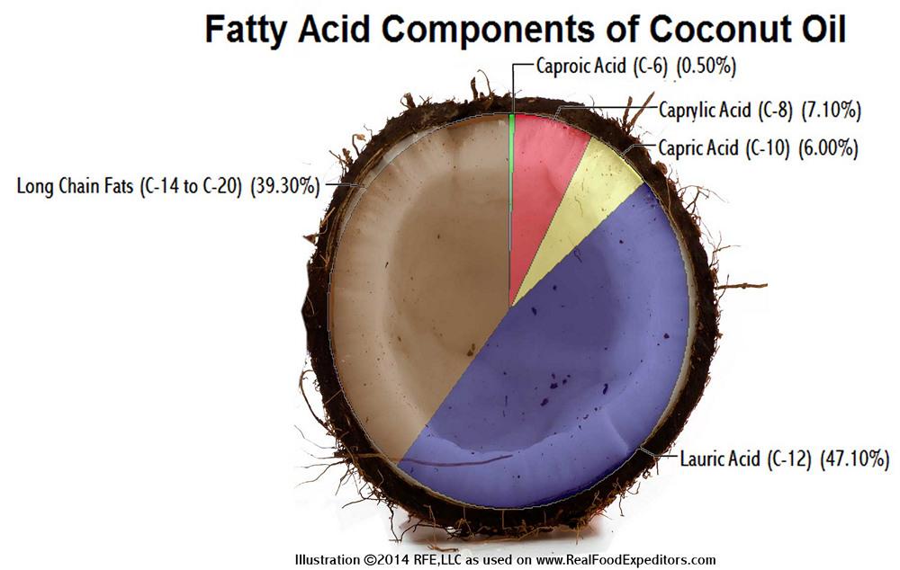 fat-in-coconut-oil