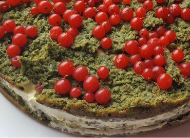 Ciasto Zielony Mech z Fasoli