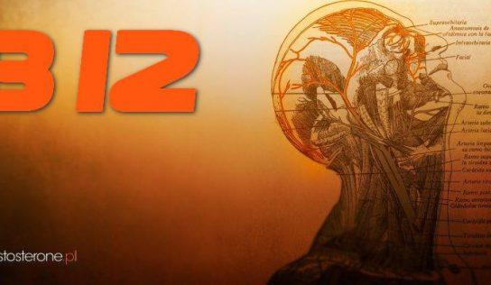 Witamina B12 – występowanie, niedobór, właściwości