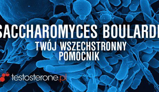 Saccharomyces boulardii – twój wszechstronny pomocnik