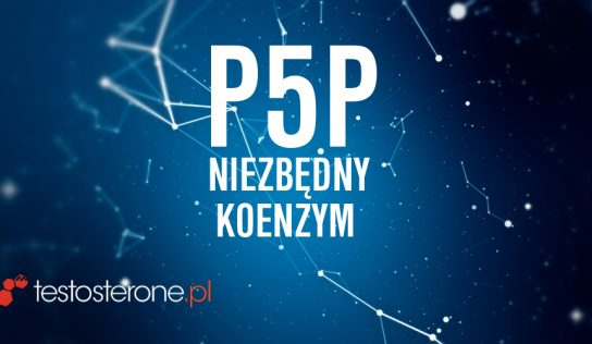 Witamina B6 jako P-5-P – niezbędny koenzym