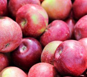 Dieta Jabłkowa – zasady i efekty!