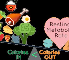 Jak przytyć/schudnąć? – objaśnienie mechanizmów