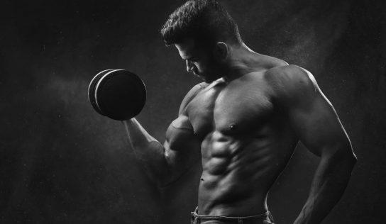 Popularne splity i programy treningowe – który wybrać?