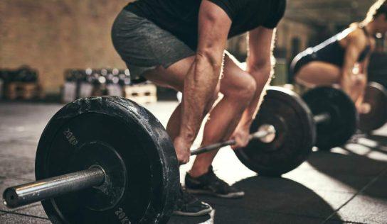 Tłumienie mikroRNA w trakcie ćwiczeń aerobowych, a wzrost syntezy białka
