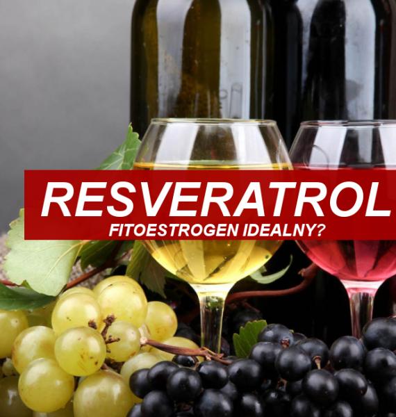 Resveratrol, idealny fitoestrogen ?