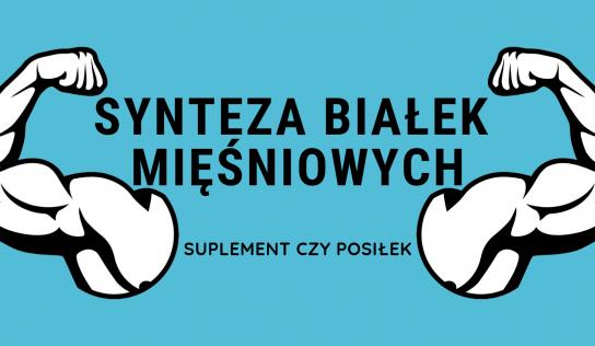 Synteza białek mięśniowych – suplement czy posiłek?