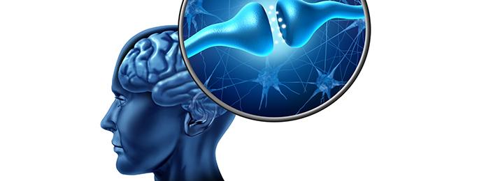 Adaptacja układu nerwowego do treningu siłowego