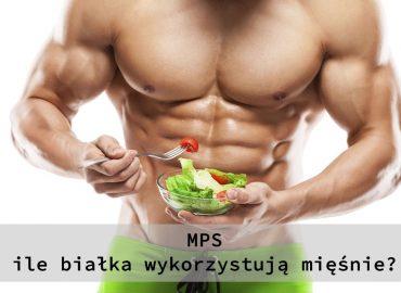 Białko – dystrybucja w ciągu dnia, maksymalna ilość w posiłku