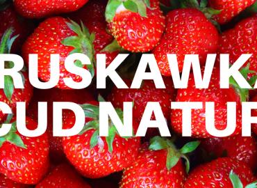 Truskawka – kalorie, witaminy minerały oraz właściwości odżywcze