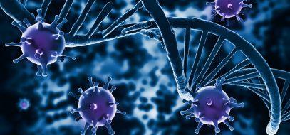 Układ immunologiczny a aktywność fizyczna