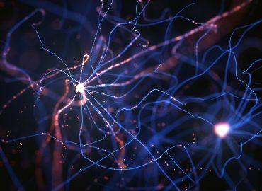 Galantamina jako wsparcie układu nerwowego