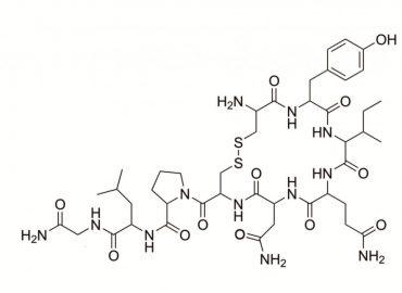 Oksytocyna – kompendium wiedzy