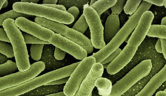 Nawracające infekcje intymne – jak z nimi walczyć?