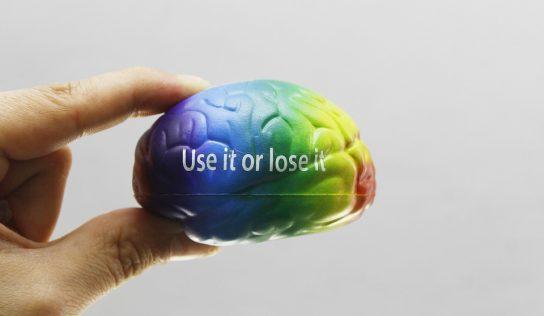 Sposób odżywiania a praca naszego mózgu