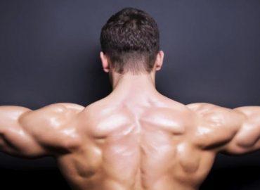 Budowanie mięśni od podstaw. Od anatomii do praktyki