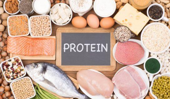 Białka – wartość biologiczna, strawność, pełnowartościowość