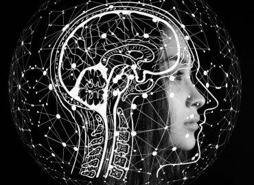 Dopamina – kompendium wiedzy