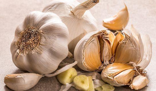 Czosnek –  wpływ na zdrowie (allicyna)