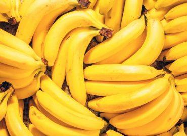 Wszystko co należy wiedzieć o bananach