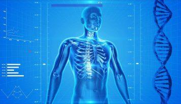 Trening siłowy a osteoporoza