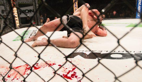 Prewencja urazów w mieszanych sztukach walki (MMA)